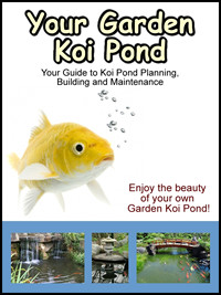 Garden koi pond guide enjoy the beauty of your own for Koi pond construction guide